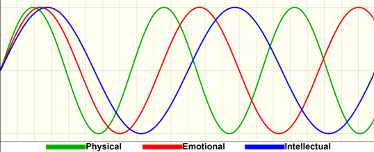 biorhythm example